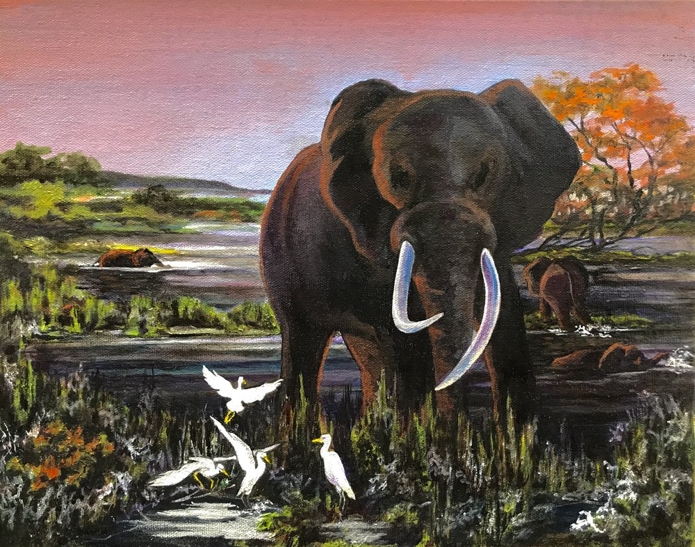 Untitled Elephant  Zambia, Africa  11 x 14  Oil on canvas  Cheri GInsburg ©