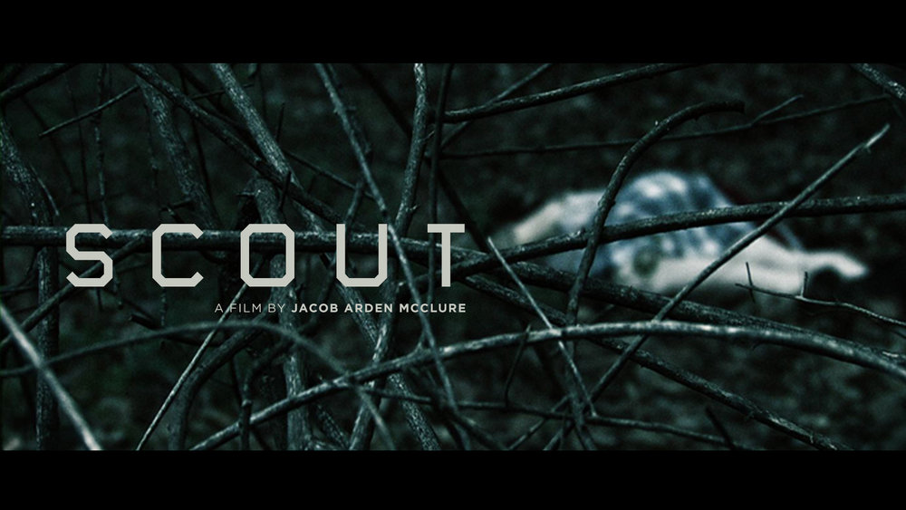 SCOUT BY JACOB ARDEN MCCLURE.jpg