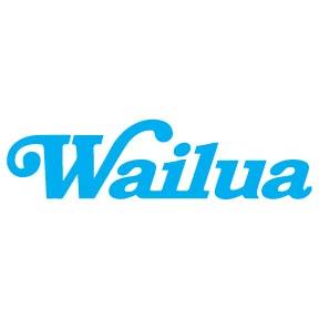 Wailua shave ice