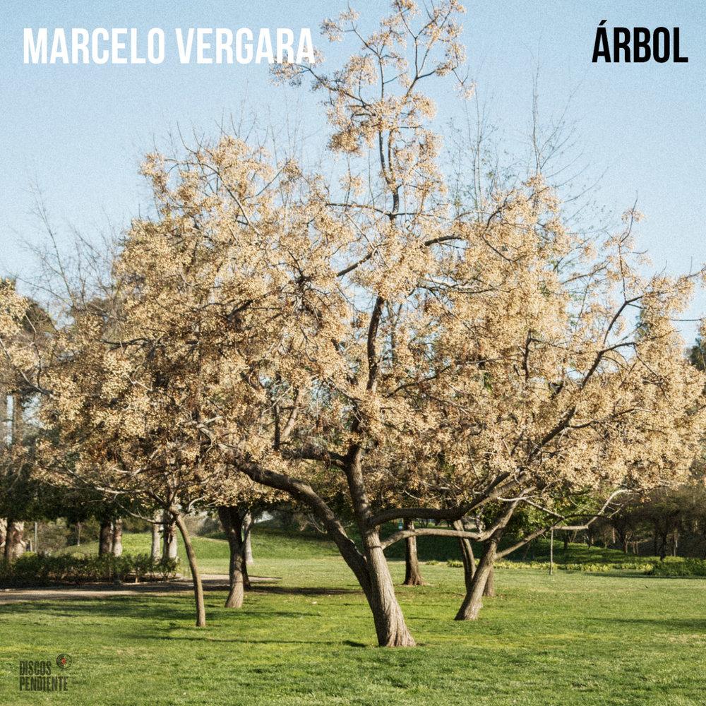 Árbol (DPCD48)