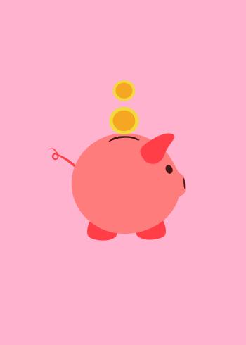 savings fund.png