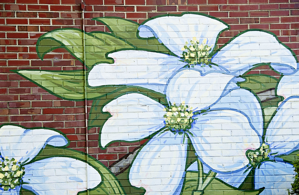 Michael Brown mural - dogwoods (2009-2011) Franklin Street, Chapel Hill, NC