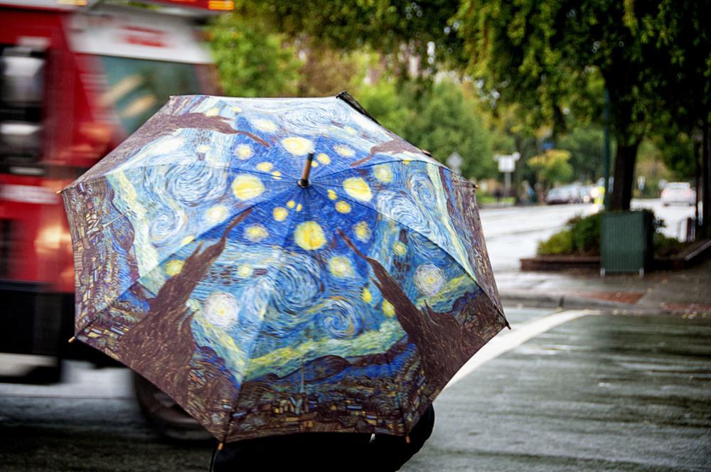 umbrella-1024x680.jpg