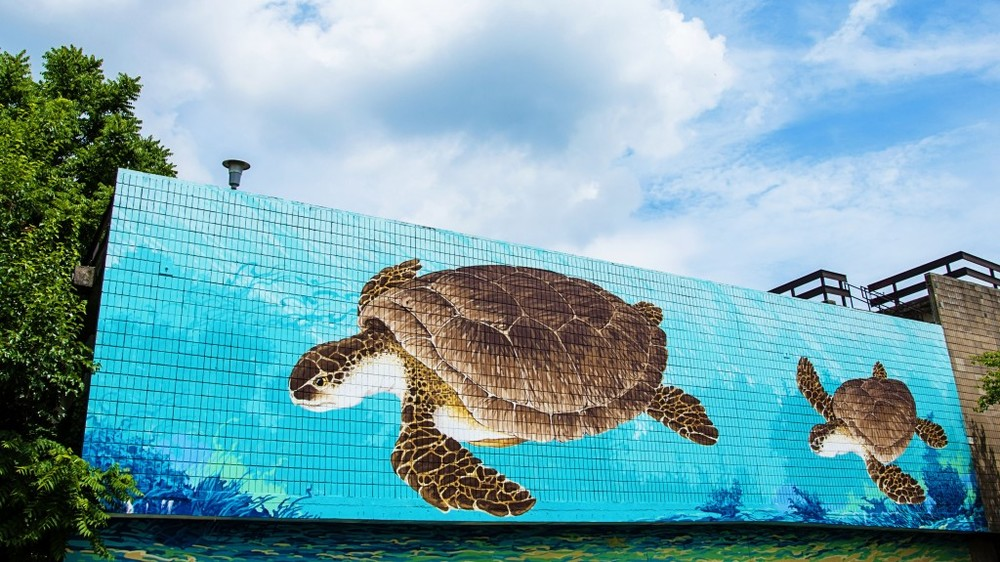 SeaTurtle-mural-1024x575.jpg
