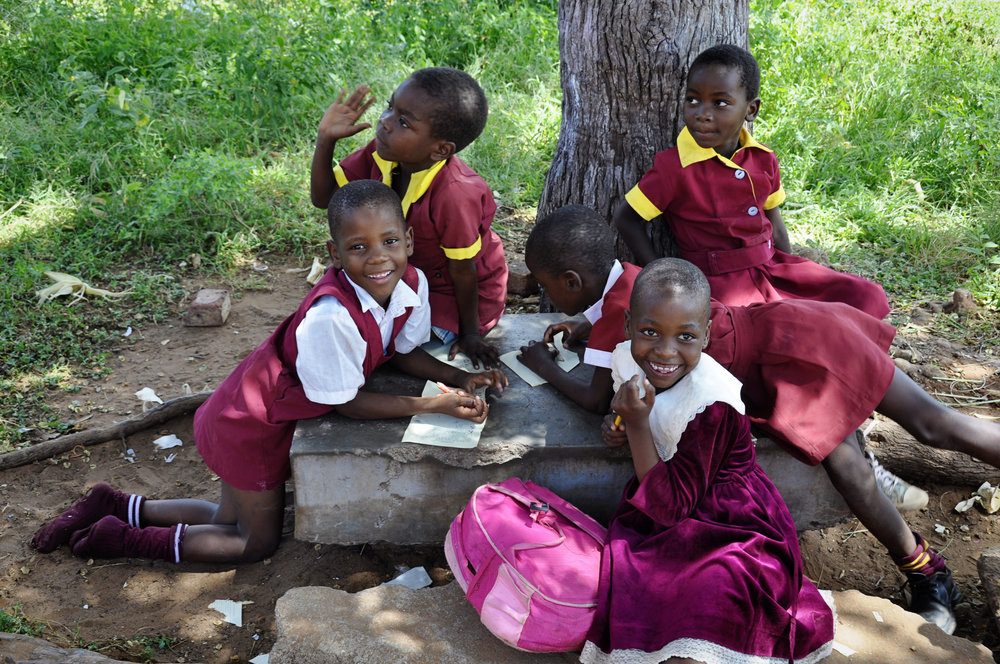 Africa-Zimbabwe-2.jpg