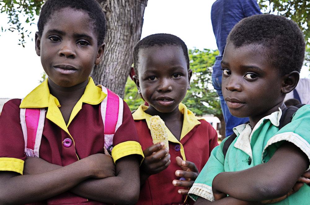 Africa-Zimbabwe-10.jpg