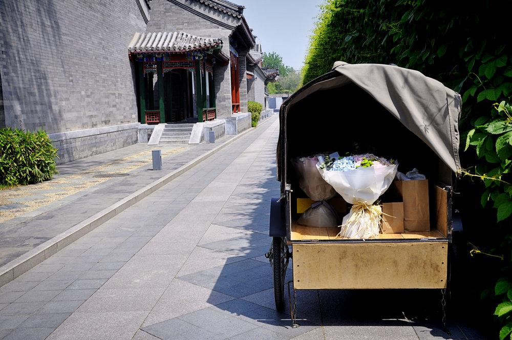 China-114.jpg