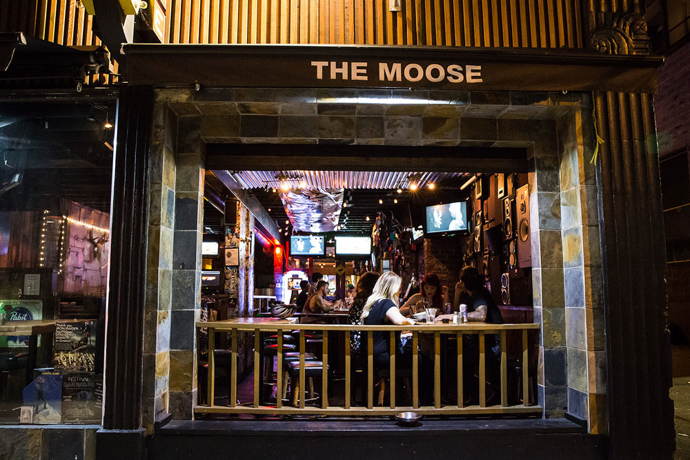 moose-4.jpg