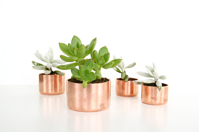 copperplanters3.jpg