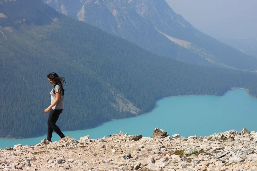 Peyto Lake Banff National Park Tour Guide Itinerary Charisma Shah