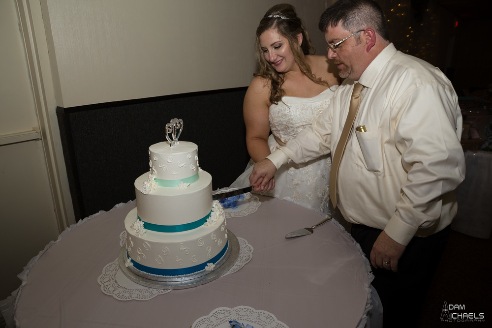 Pittsburgh Incline Wedding-84.jpg