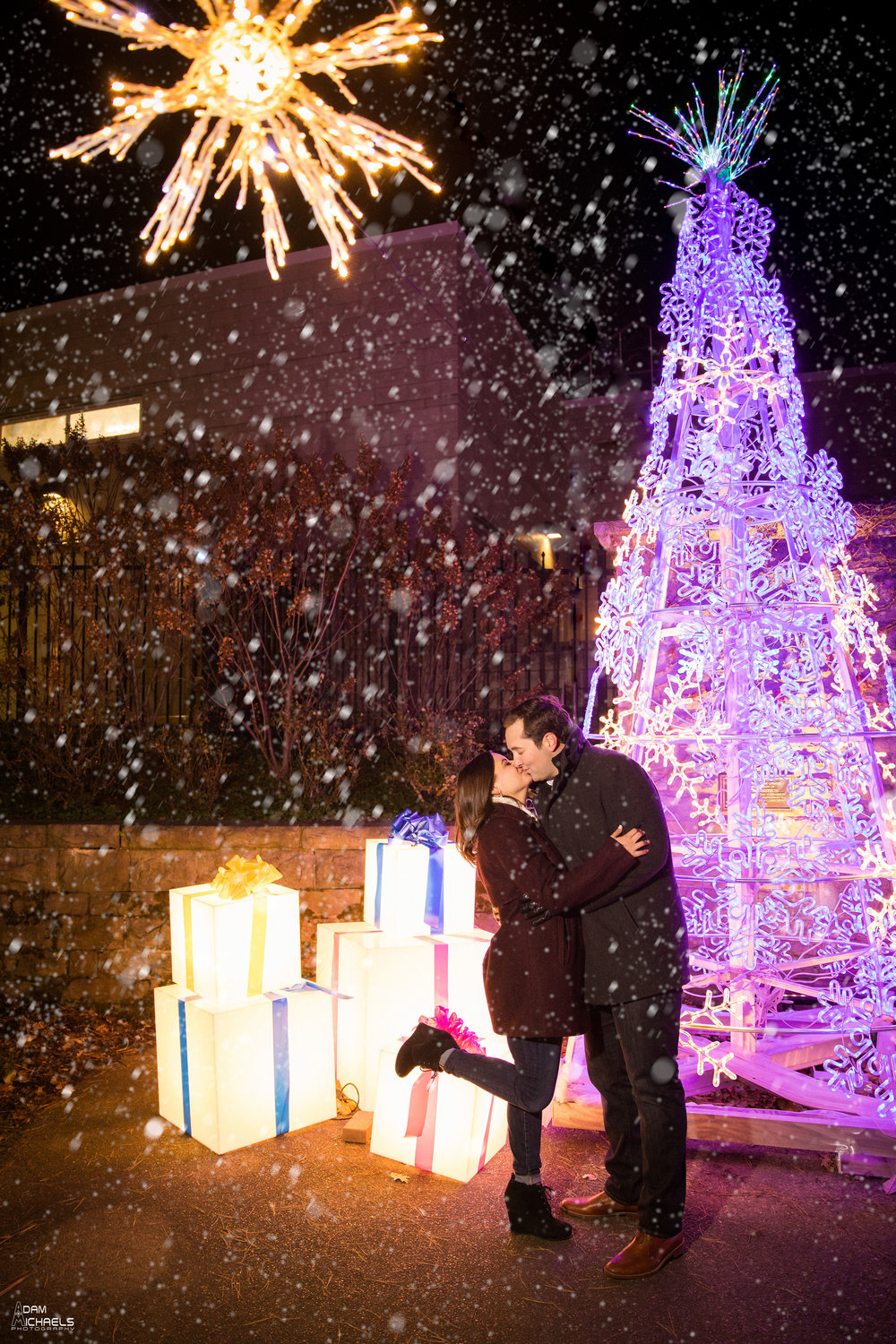 Phipps Holiday Winter Snow Engagement Pictures_1841.jpg