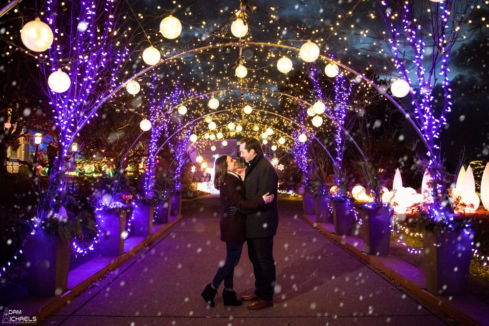 Phipps Holiday Winter Engagement.jpg