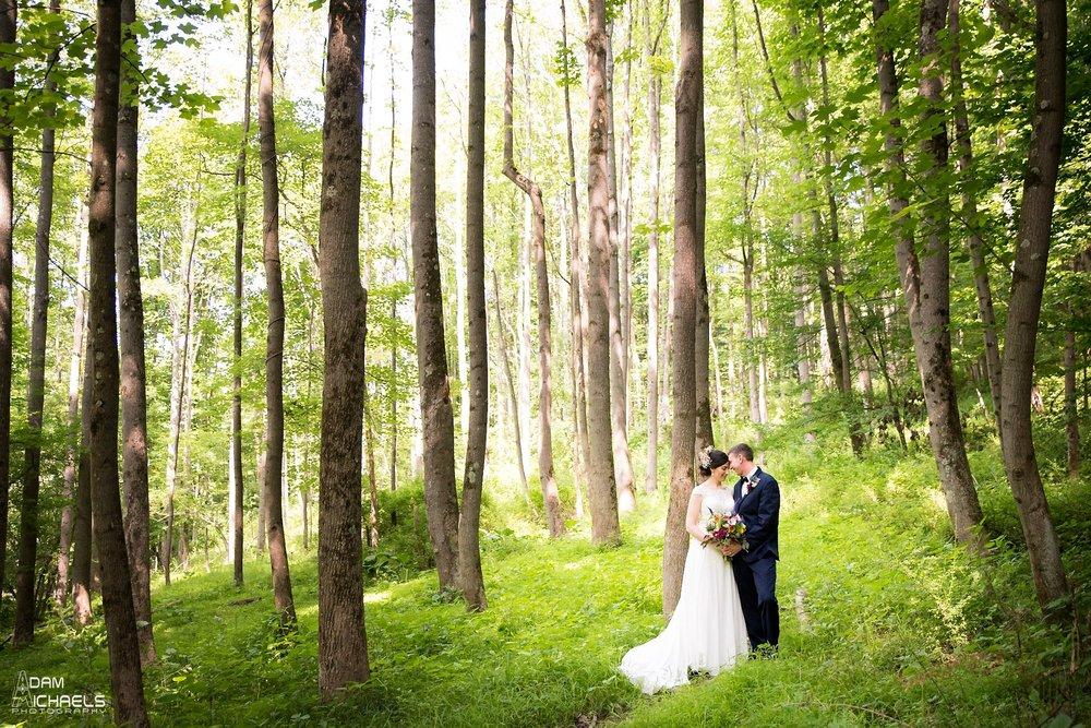 85d2f52ba1f4 NOAH s Event Venue Cranberry Twp Wedding  Rebecca  amp  ...