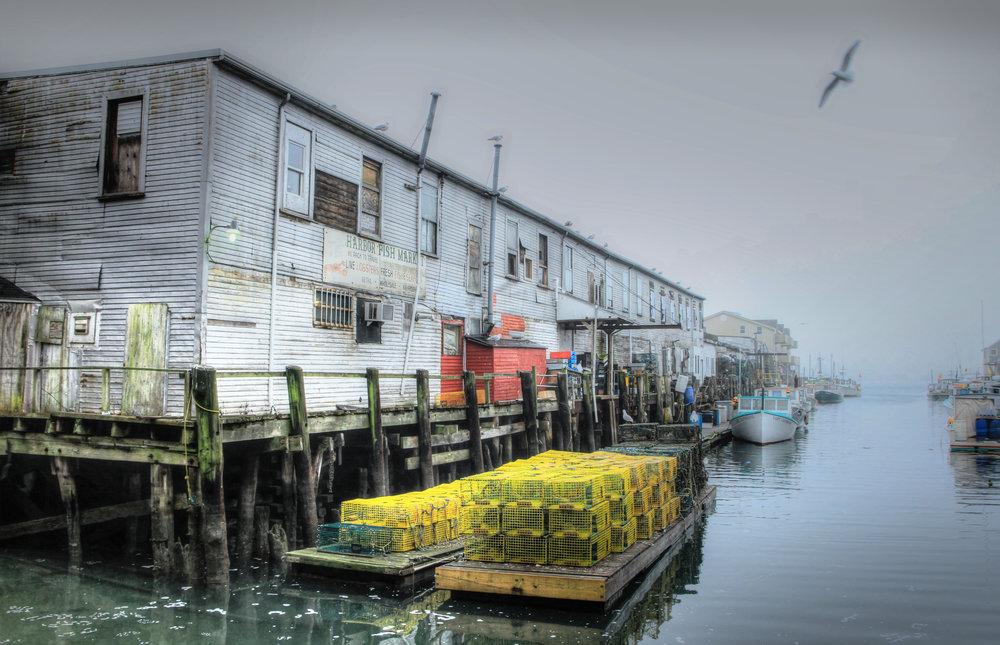 dock-fog-large.jpg
