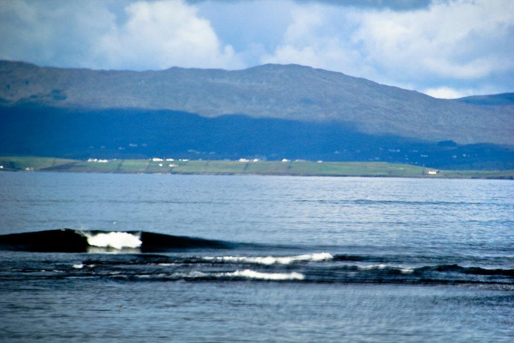 Part of Ireland's charm.