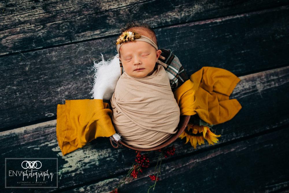 Mount Vernon Columbus Ohio newborn photographer photography in studio (2).jpg
