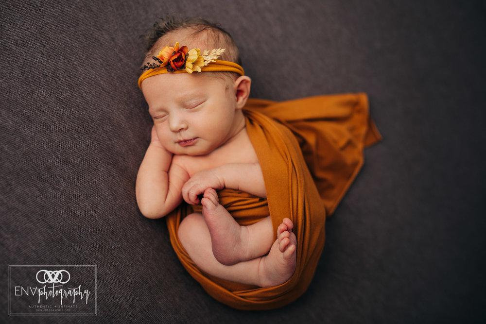 Mount Vernon Columbus Ohio newborn photographer photography in studio (4).jpg