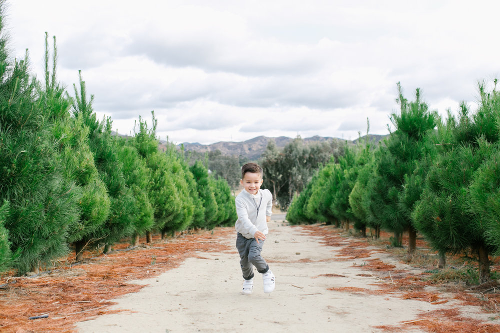 Orange County Holiday Mini-Session