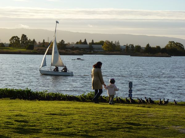 ShorelinePk.People.Coots.Sailboat.Feb?.11.600.jpg