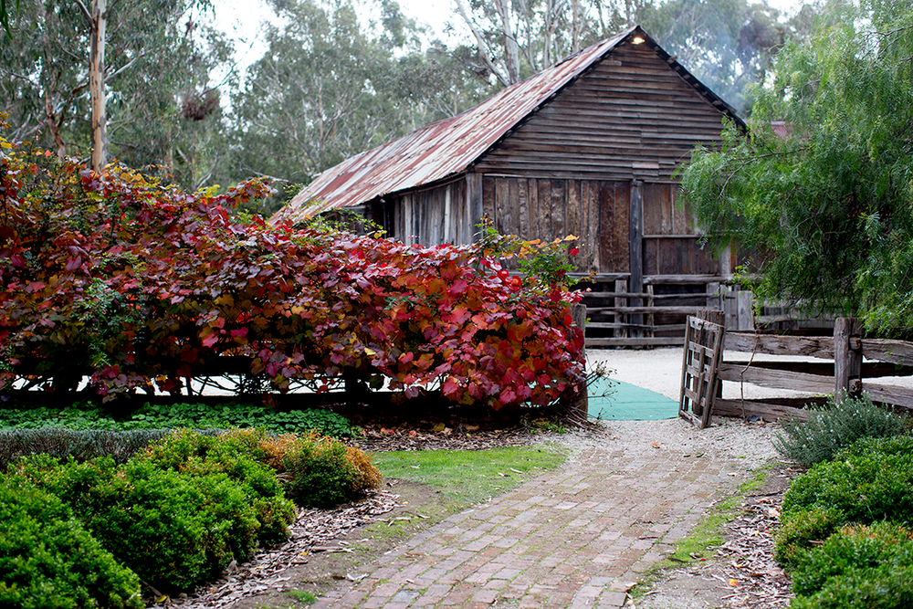 The-Epicurean_Emu-Bottom-Homestead_Weddings_Woolshed.png