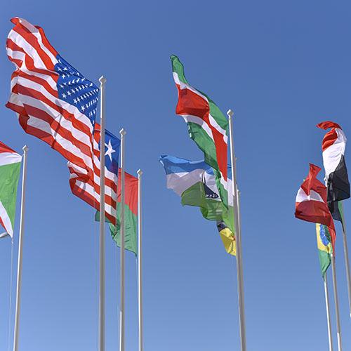 International Relations -