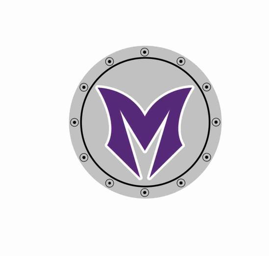 VM Shield.jpg