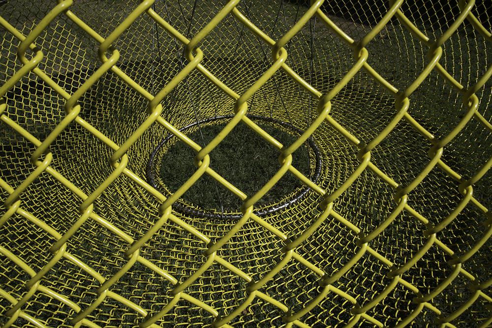 _DSC5767_AAM-YellowGourdCloseUp-6x10-100.jpg