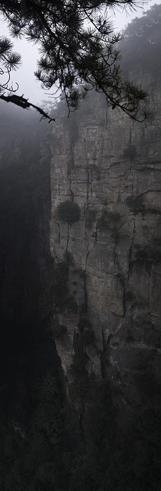 Wall_Repo-6294-6305_10x5.jpg