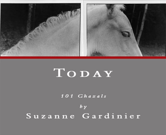 Gardinier-Today.jpg