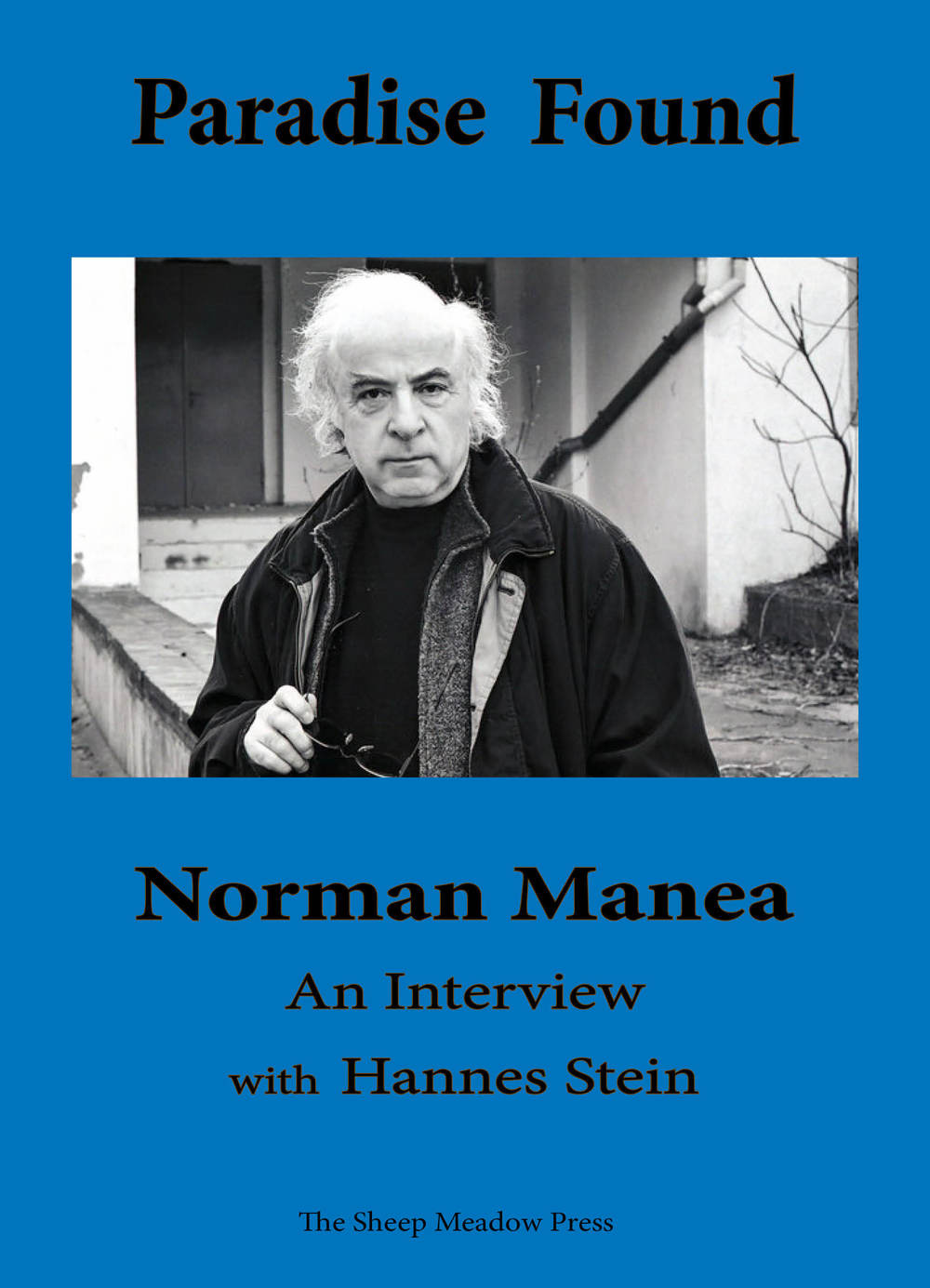 Manea_Stein_Cover_GALLEY_8.7.2013.jpg
