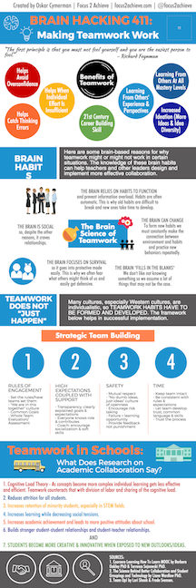 Making Teamwork Work Infographic