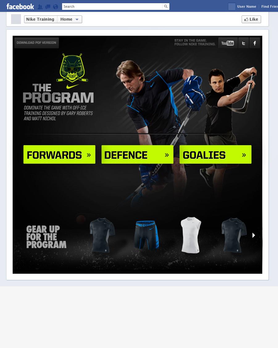 02-Nike-the-program.jpg