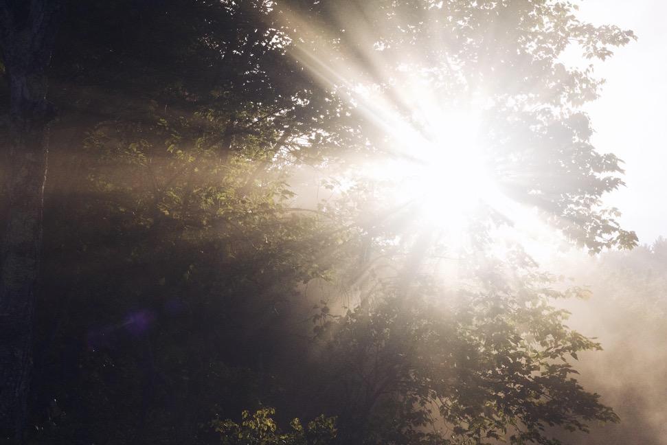 natureflare.jpg