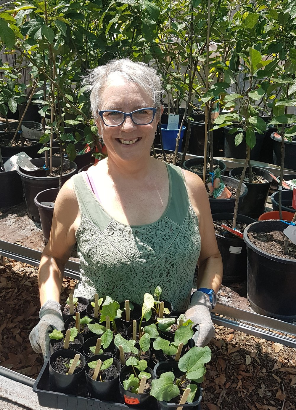 Christine - What is your Role?Seedling production- part of the Urban Food ProgramWhat are your highlights as a volunteer?Watching the growth of seeds into seedlings and then as plants in the garden. Also the camaraderie and company of the other volunteersWhat's your advice for someone who is considering volunteer work?Be clear about your capacity as a volunteer – how much and how often you can manage. Try to get a clear understanding of what will be expected of you before you start.