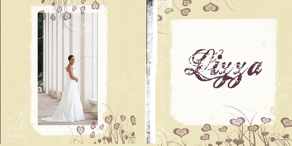 Bridal DVD cover.jpg
