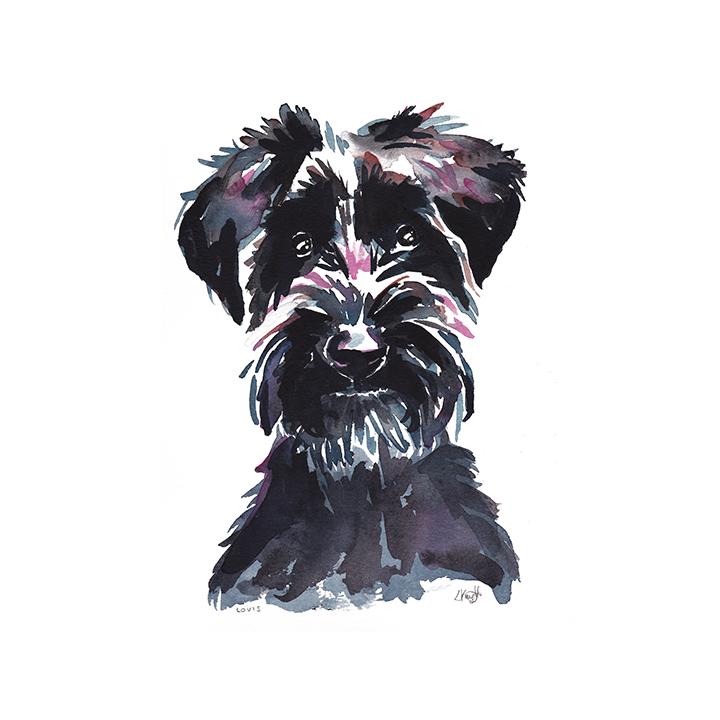 LK_web_square_dog_0000s_0001_Louis_sarah_dog_insta.jpg