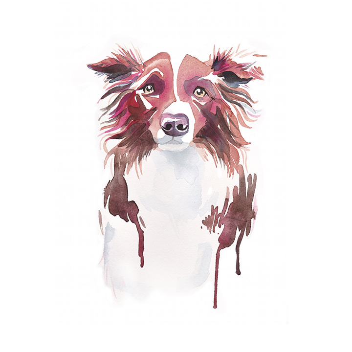 LK_web_square_dog_0000s_0004_stella_dog commission_white.jpg