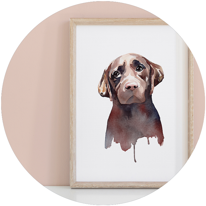Hand painted pet portraits - Modern watercolour paintings of your four legged friends