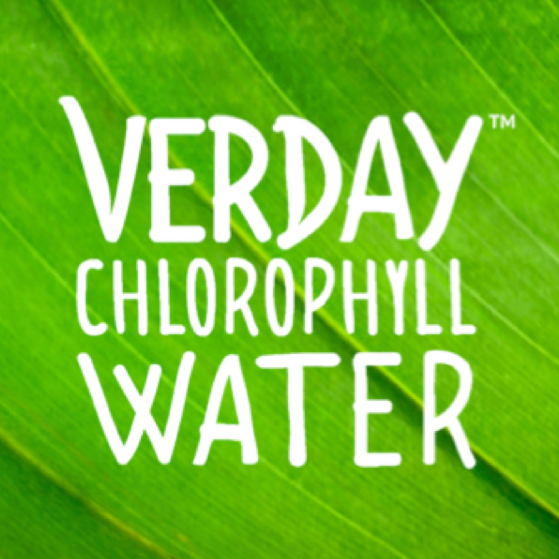 Verday SS Logo.png