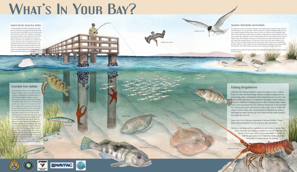 SD Bay sign project low res.jpg