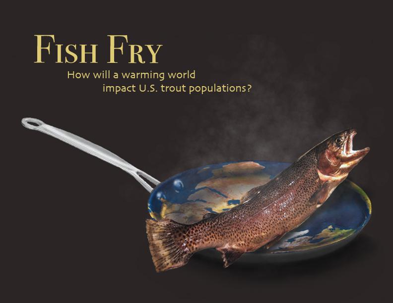 fishfry1.jpg