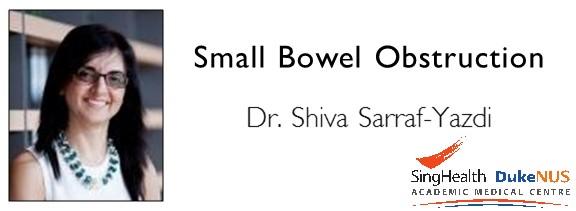 """<a href=""""comments/2016/1/6/small-bowel-obstruction"""">Comment   </a> <a target=""""_blank"""" href=""""s/Small_Bowel_Obstruction.pdf"""">Transcript</a>"""