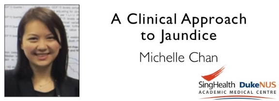 """<a href=""""comments/2015/12/29/a-clinical-approach-to-jaundice"""">Comment   </a> <a target=""""_blank"""" href=""""s/A_Clinical_Approach_to_Jaundice.pdf"""">Transcript</a>"""