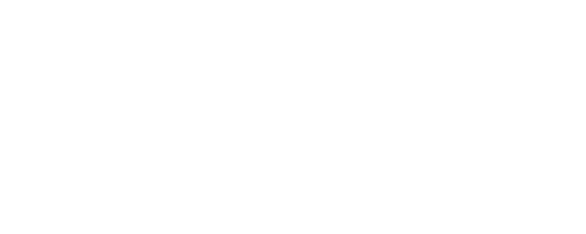 Berner Theaterverein