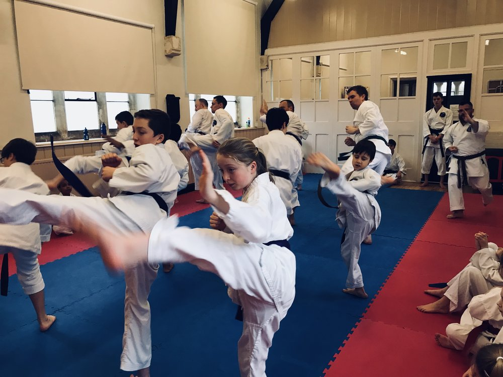 Along with kata we learn many other disciplines. We practice flow drills and combinations until they become instinctive. We develop speed this way too.
