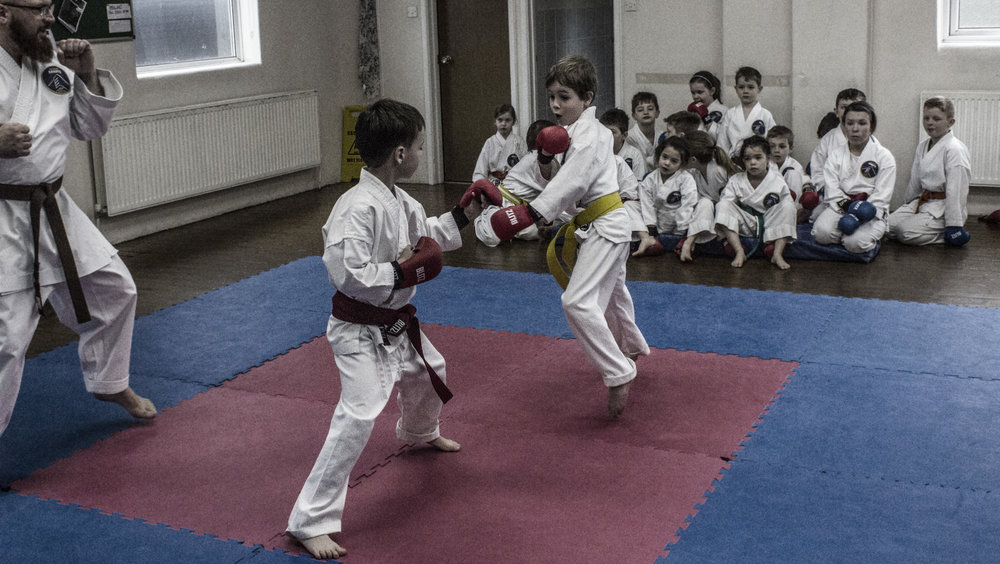 Jake and Zavier practicing kumite