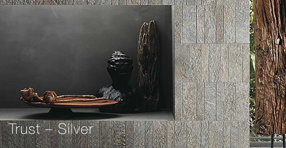 trust_silver2.jpg