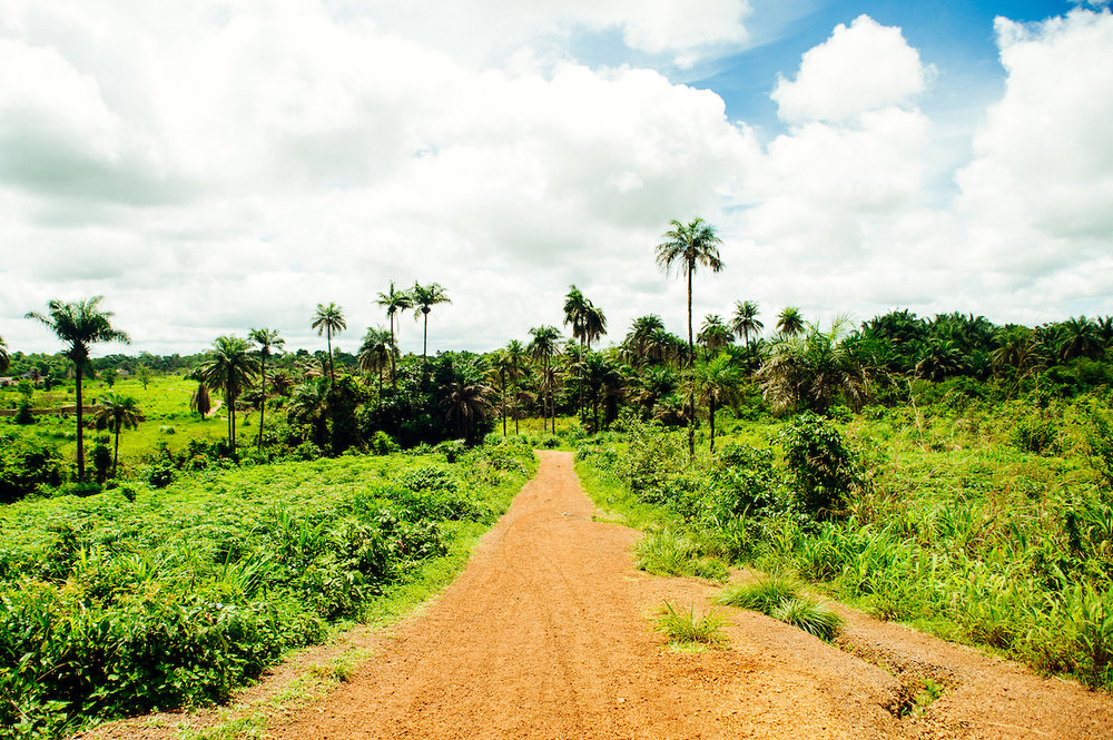 Street Child Sierra Leona