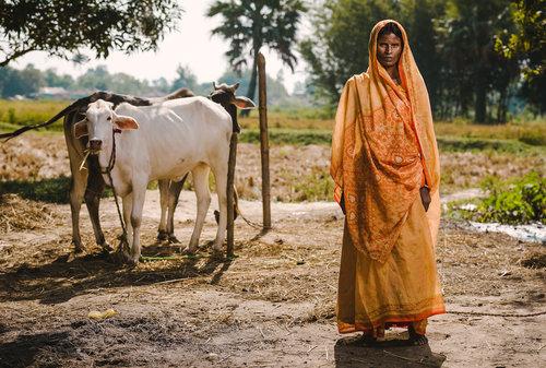 NIÑOS MUSAHAR  Los Musahar sufren de serias discriminaciones debido a que con considerados como la casta más baja, por lo que son encarcelados en trabajos forzados. Esta es una de las comunidades menos desarrolladas en Nepal. Las niñas en especial sufren más desventajas por su casta,clase y discriminación de género. Street Child quiere abordar este problema a través de una intervención dirigida, diseñada para cambiar la opinión pública, combatiendo la marginación y liberando a la comunidad del trabajo esclavo.